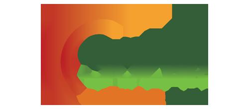 sp-roi-logo